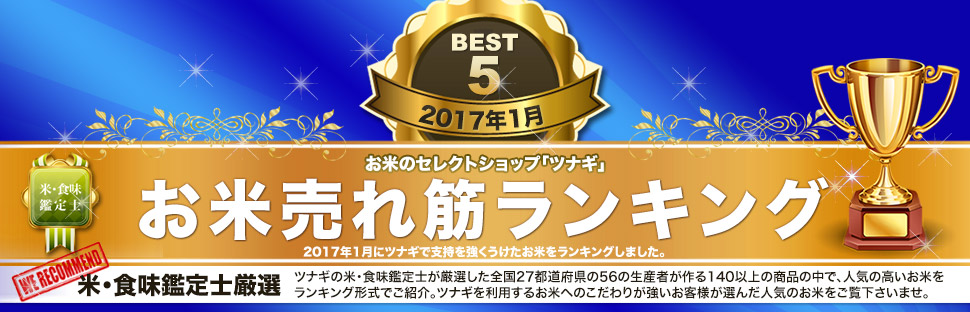 TOP_rank_pc_201701