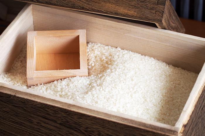 お米の正しい保存方法って?害虫予防や賞味期限も