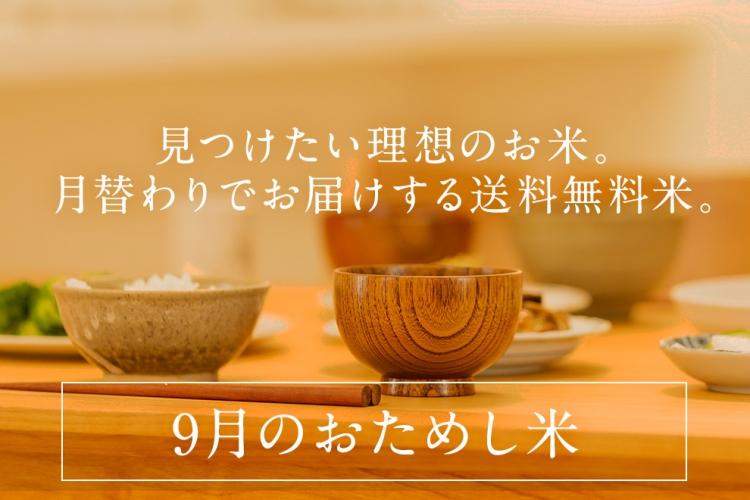 otamashi_202009