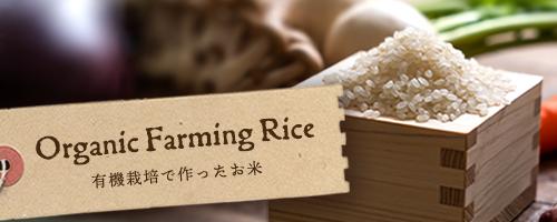 安心・安全。有機栽培で作ったお米特集